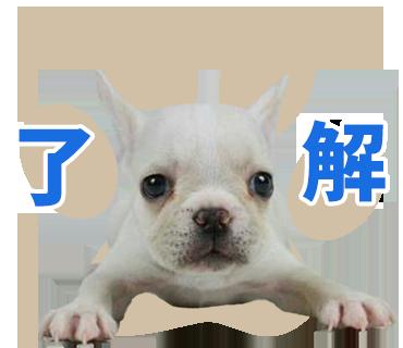 犬のLINEスタンプ