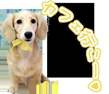 A.O様わんちゃんのLINEスタンプ