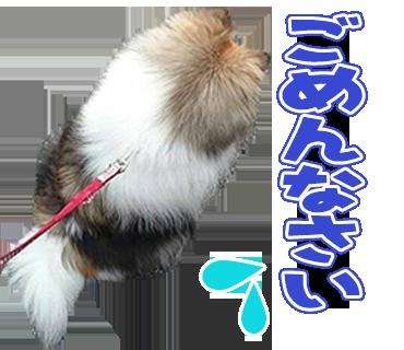 YA様の愛犬のLINEスタンプ