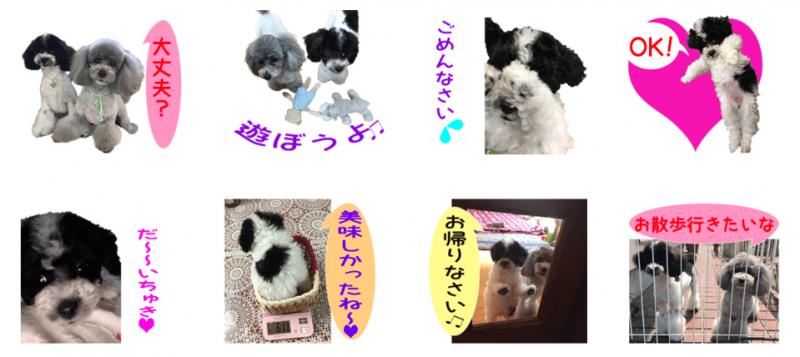 メイ☆ちぇるちゃんのオリジナルLINEスタンプ