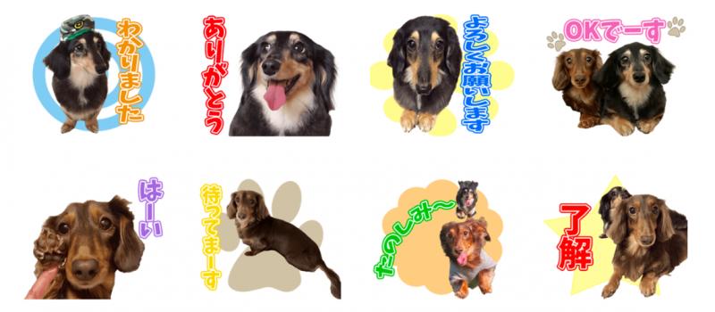 cocoちゃんとhinaちゃんのオリジナルLINEスタンプ制作