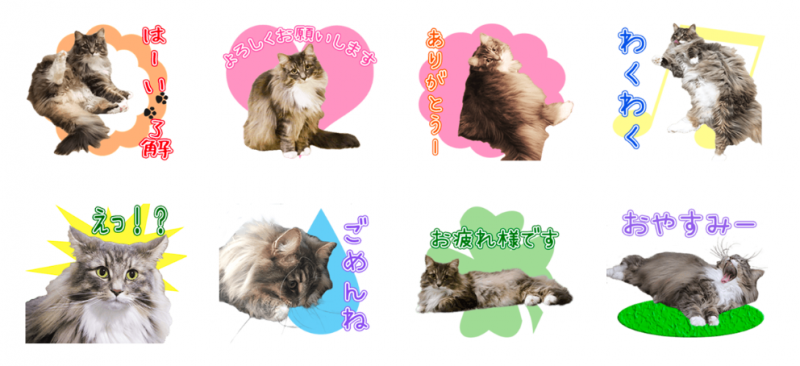 ぱぽるずちゃんのオリジナルLINEスタンプ制作