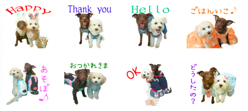 BlueちゃんとHaruちゃんのオリジナルLINEスタンプ制作