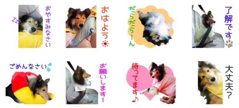 ぷじぃくんとうがちゃんのオリジナルLINEスタンプ制作1