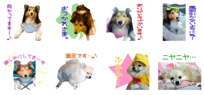 ぷじぃくんとうがちゃんのオリジナルLINEスタンプ制作2