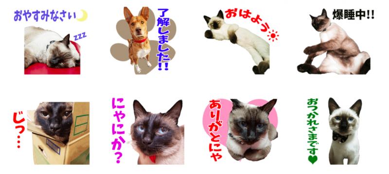Michiyo's FamilyオリジナルLINEスタンプ制作