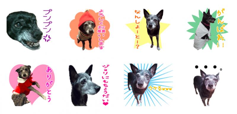 ジョリちゃんのオリジナルLINEスタンプ制作2