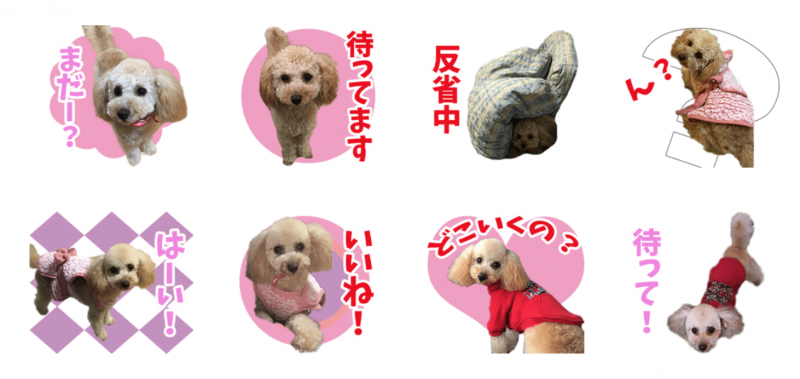 我が家のアイドルちゃんのオリジナルLINEスタンプ制作2