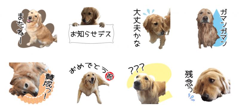 りくちゃんのオリジナルLINEスタンプ第2弾