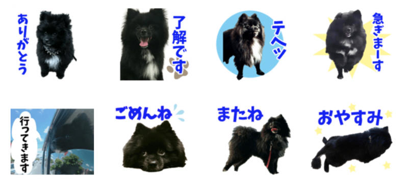 熊太郎ちゃんのオリジナルLINEスタンプ制作